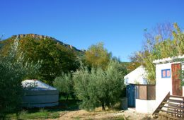 facilities_yurt_and_mountain_view-600x400.jpg