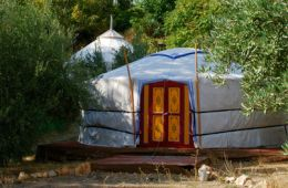 yurt_amarillo_outside_view_02-402x600.jpg